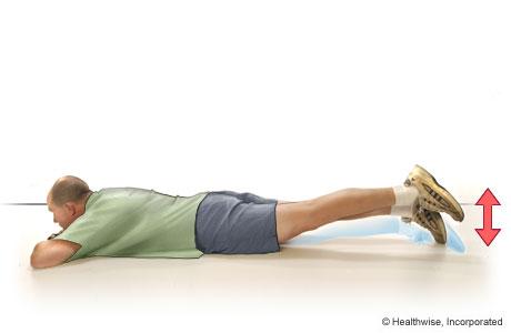 Quadriceps Exercises Quadriceps Muscles Exercises